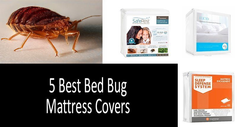 Top 5 Best Bed Bug Mattress Covers Protectors Review 2020